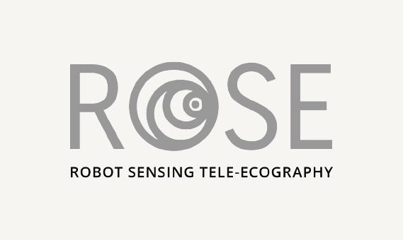 RObot SEnsing Tele-Ecography