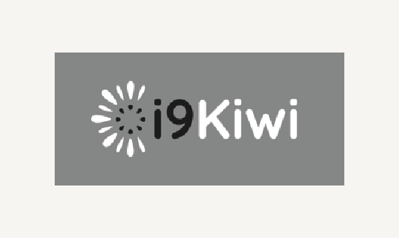 Development of strategies for the sustainability of the kiwi industry through the creation of a value-added product